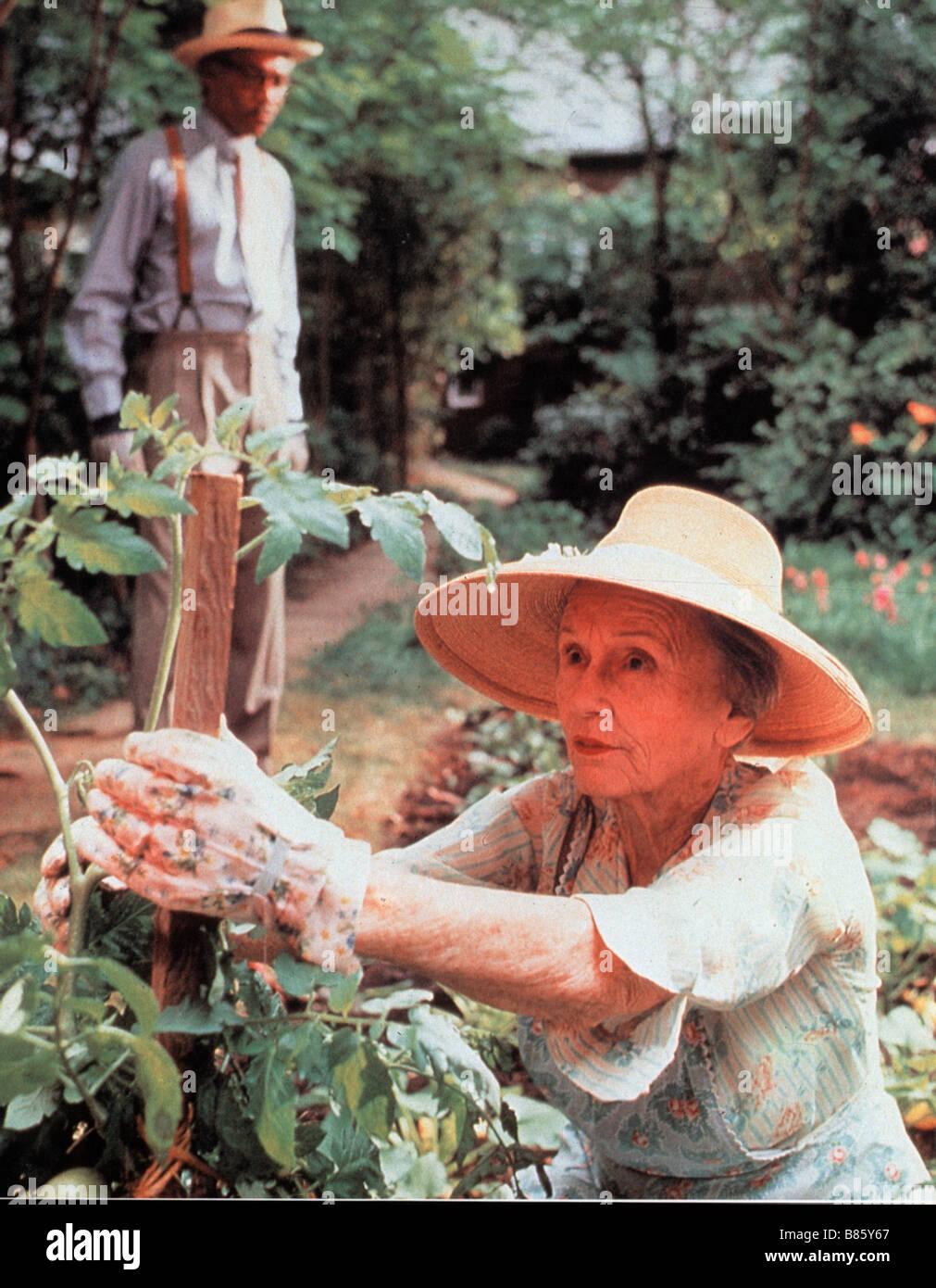 June Lockhart images