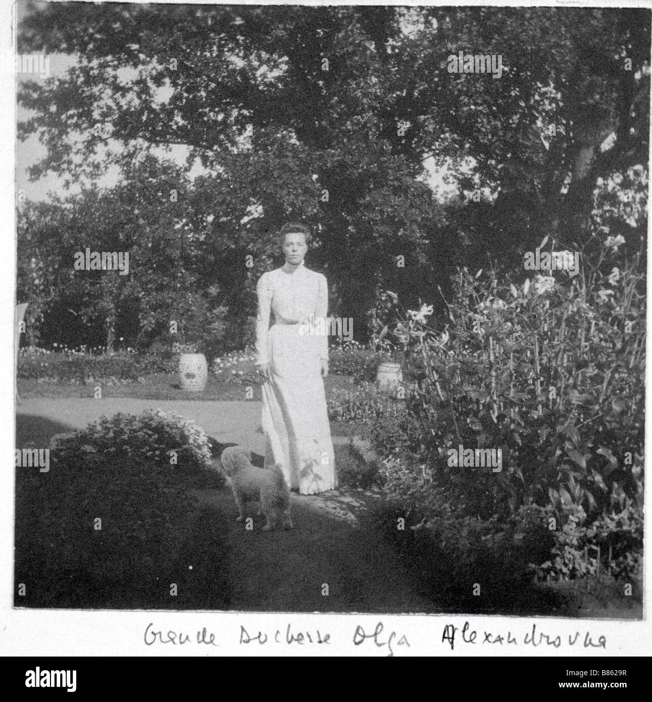 Grand Duchess Olga Alexandrovna - Stock Image
