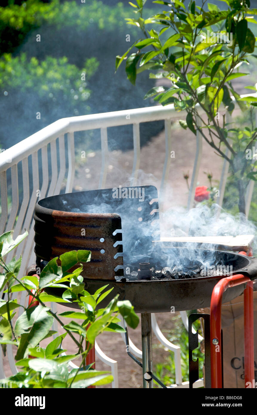 Charcoal smoking in a barbecue in a garden - Stock Image