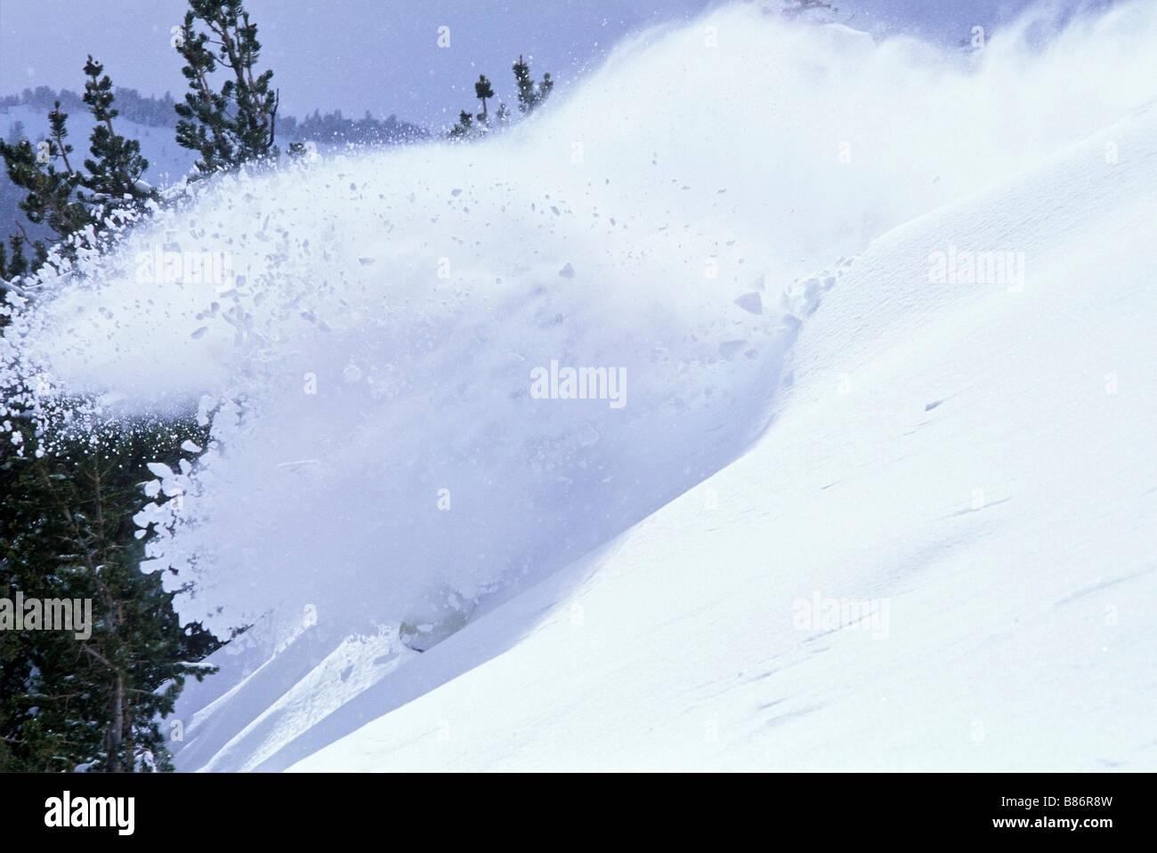 Snowboarder in powder, Mt. Rose, Nevada, USA Stock Photo