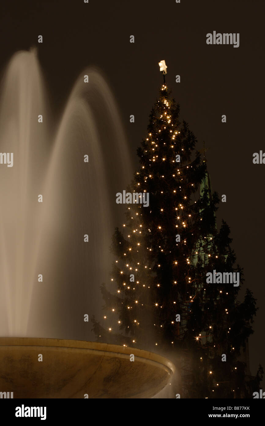 Norwegian Christmas Tree Stock Photos & Norwegian Christmas Tree ...
