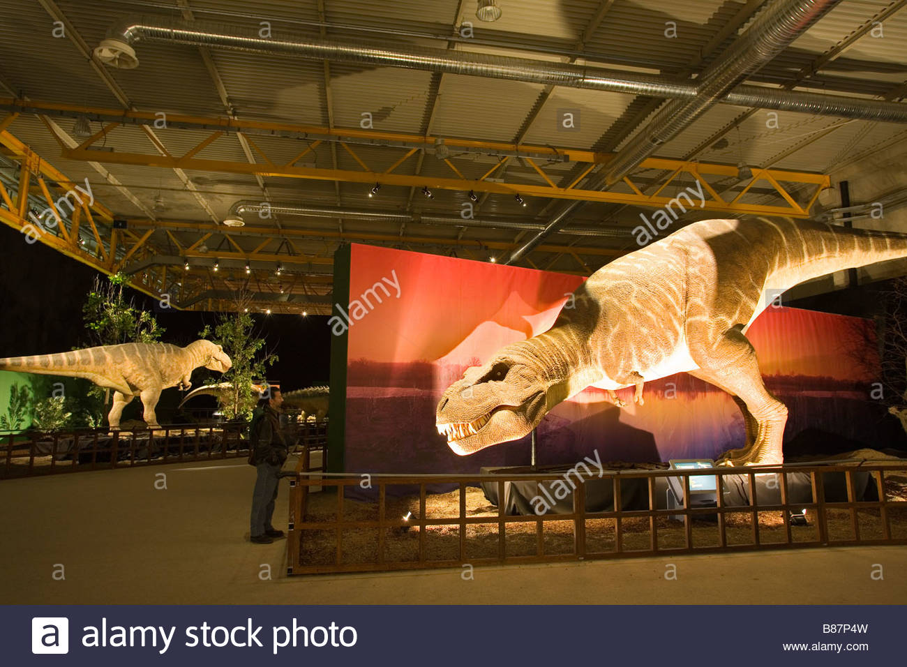 europe,italy,lombardia,cremona,exhibition of reproduction of dinosaurs,tyrannosaur - Stock Image
