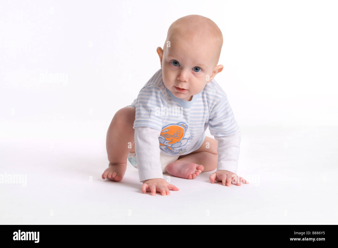 Portrait of a baby boy starting to crawl - Stock Image