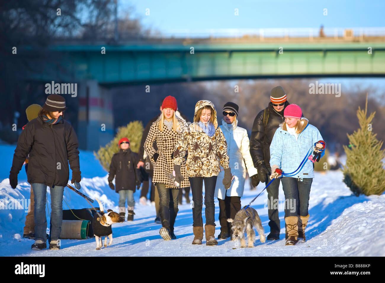 Family walking on the frozen Assiniboine River Trail, winter.  Winnipeg, Manitoba, Canada. - Stock Image