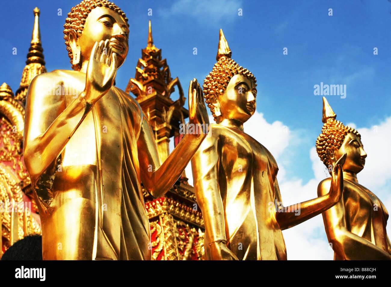 Buddha - Stock Image