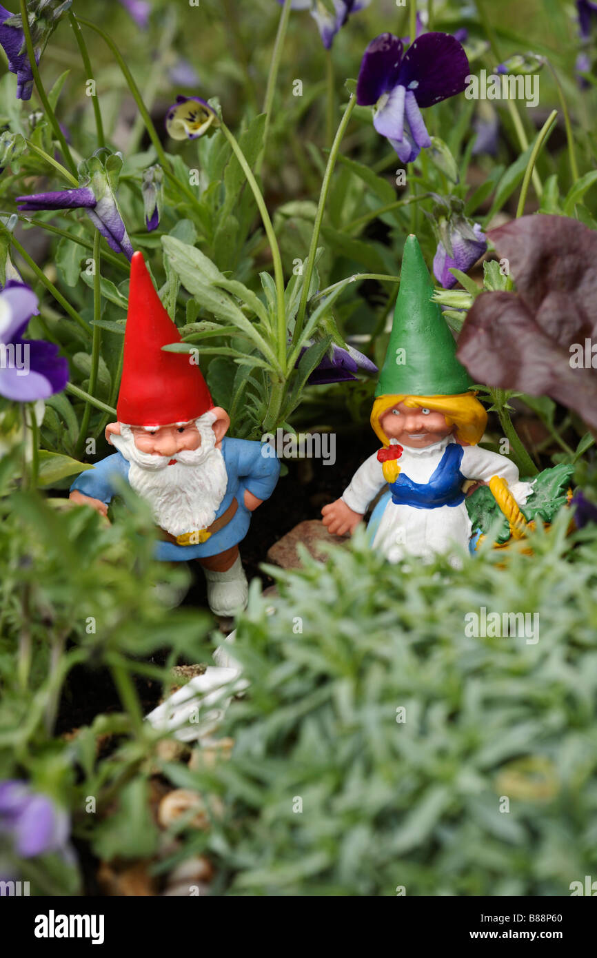 Gnome Couple In Violas For Childrens Gardening   Stock Image