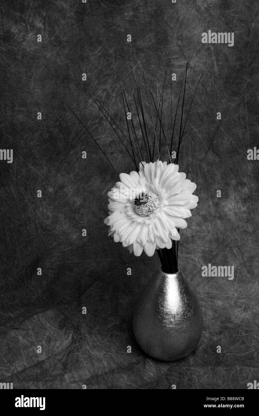 Flower vase black and white stock photos images alamy a white flower in a silver vase stock image mightylinksfo