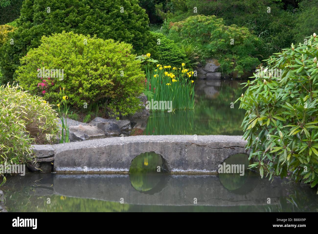 Seattle WA Kubota Garden City Park A Stone Bridge Spans Pond In The Japanese