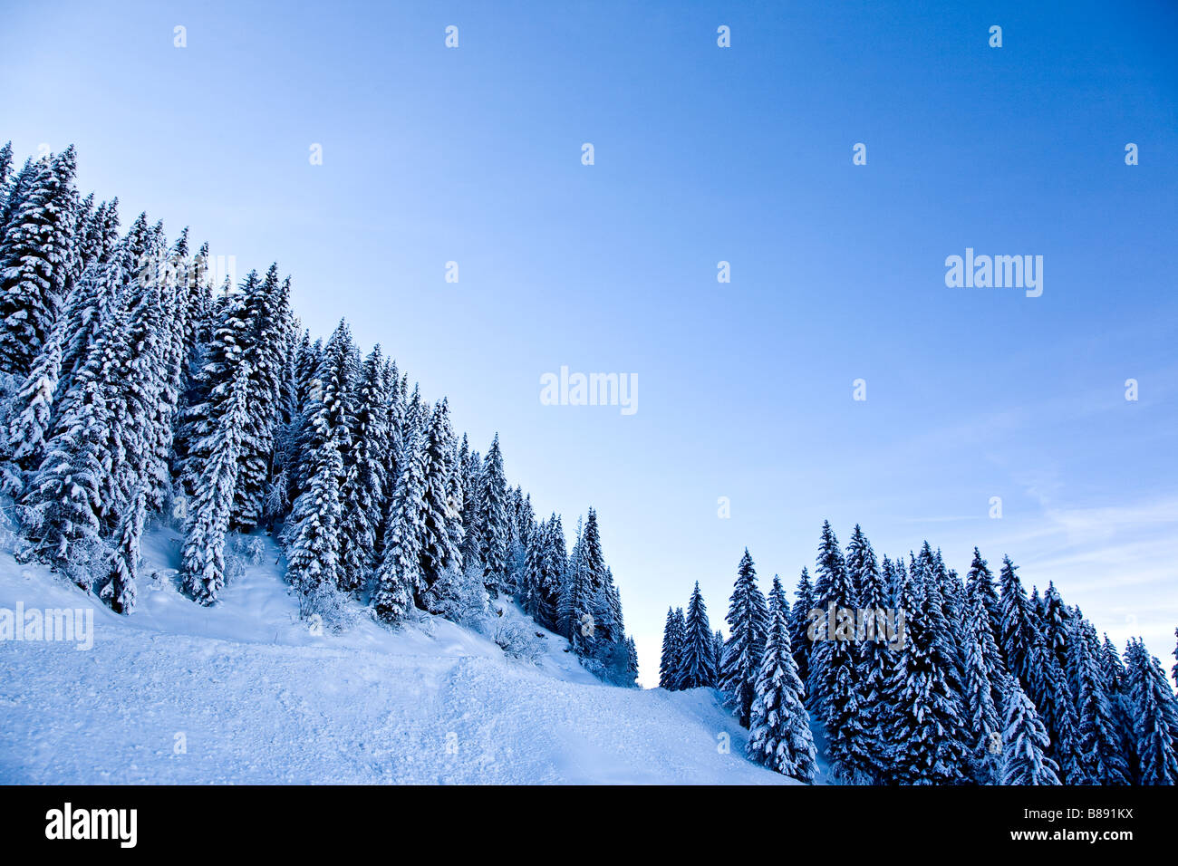 Dramatic alpine scenery with snow covered piste and trees Les Saises French Alpes - Stock Image