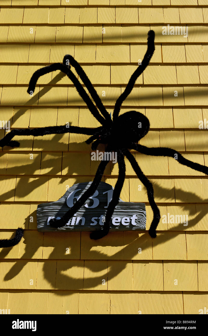 Big furry spiders on the outside of a house as halloween decoration - Stock Image