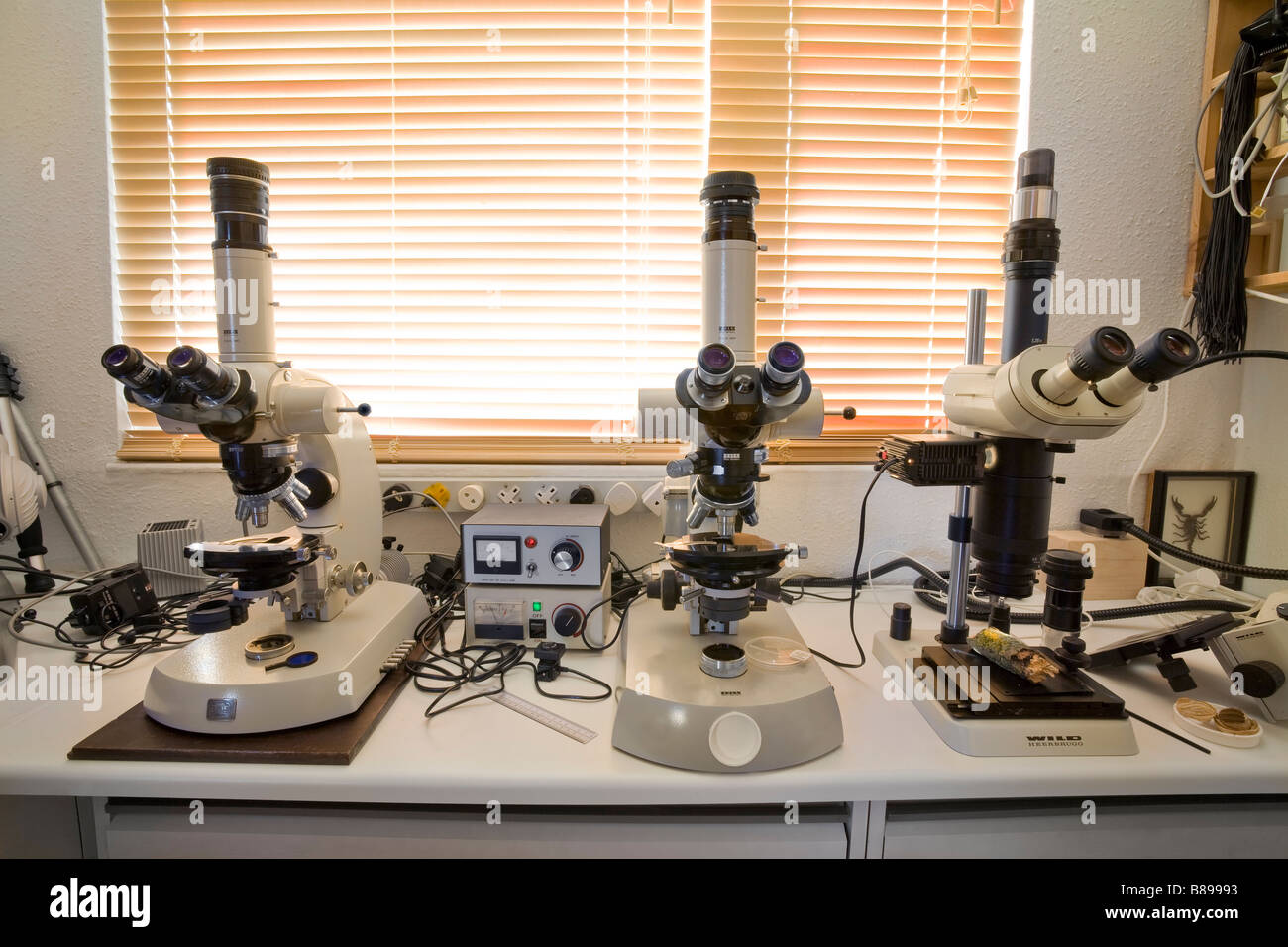 microscope science lab Zeiss Wild Leica scopes - Stock Image