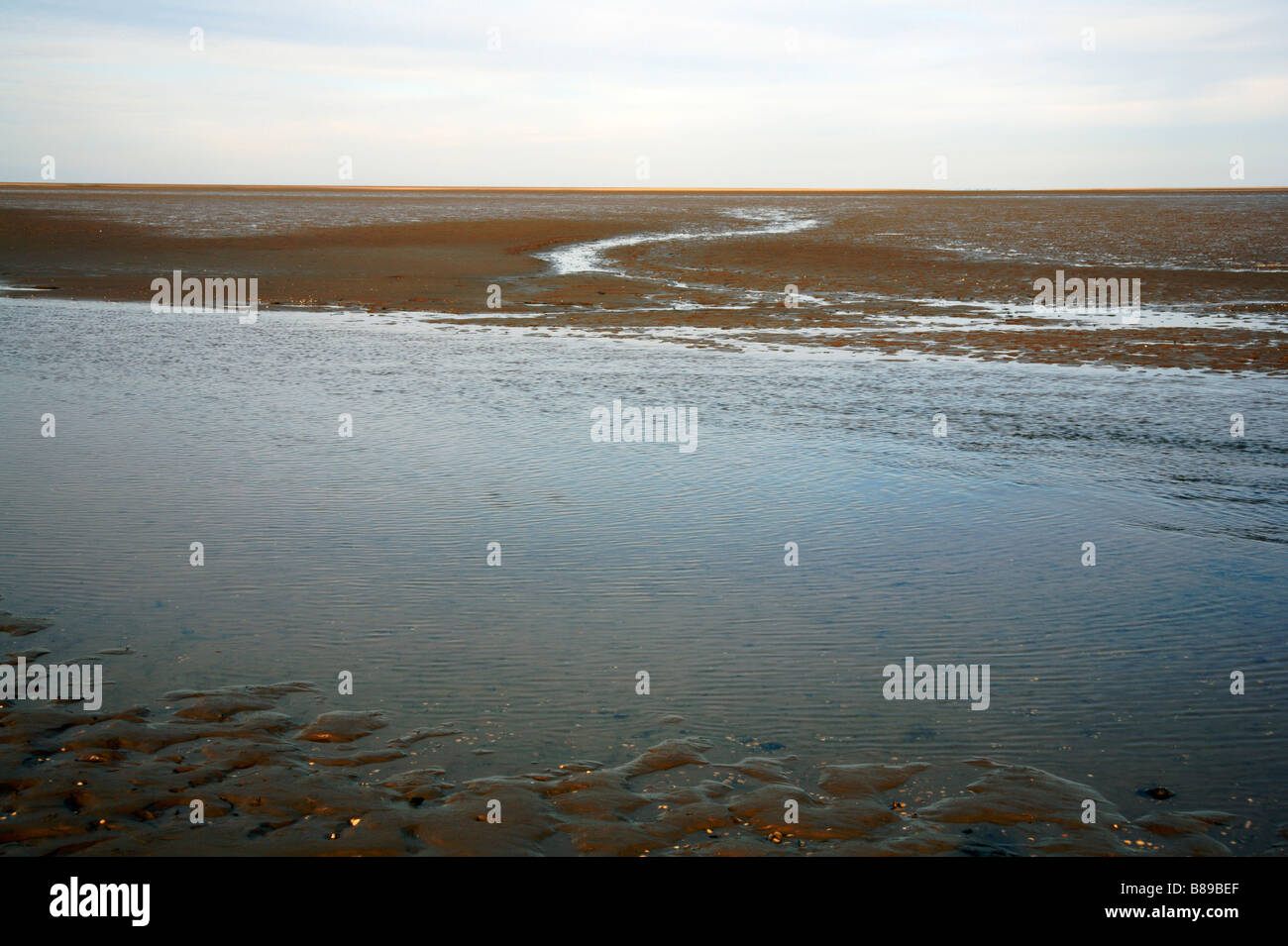 Creek at Stiffkey, Norfolk, UK, with small stream running over West Sand to the sea. - Stock Image
