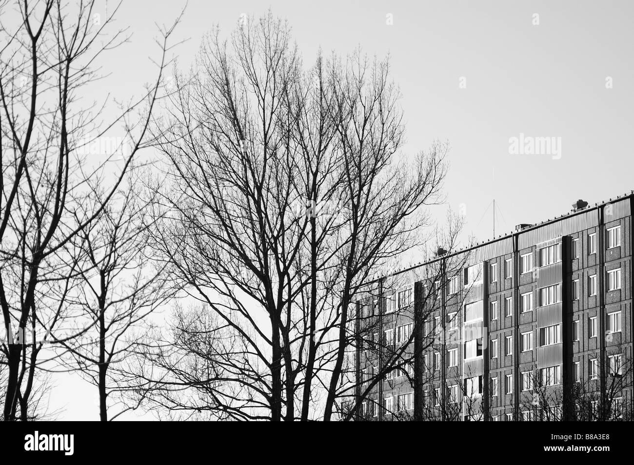 Building and trees without leaves,Gothenburg,Sweden - Stock Image