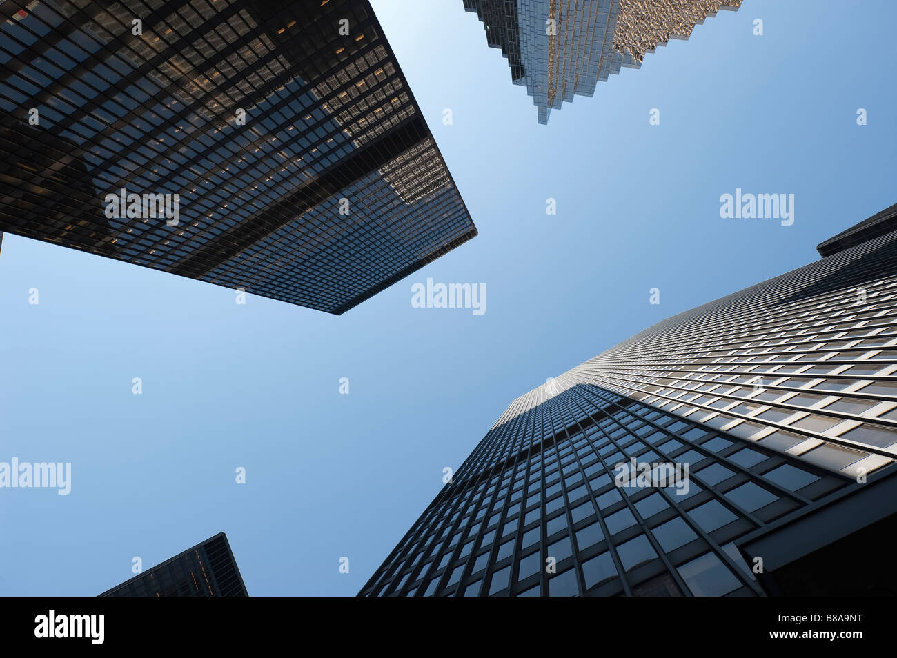 Looking straight up between several highrise buildings in a downtown area - Stock Image