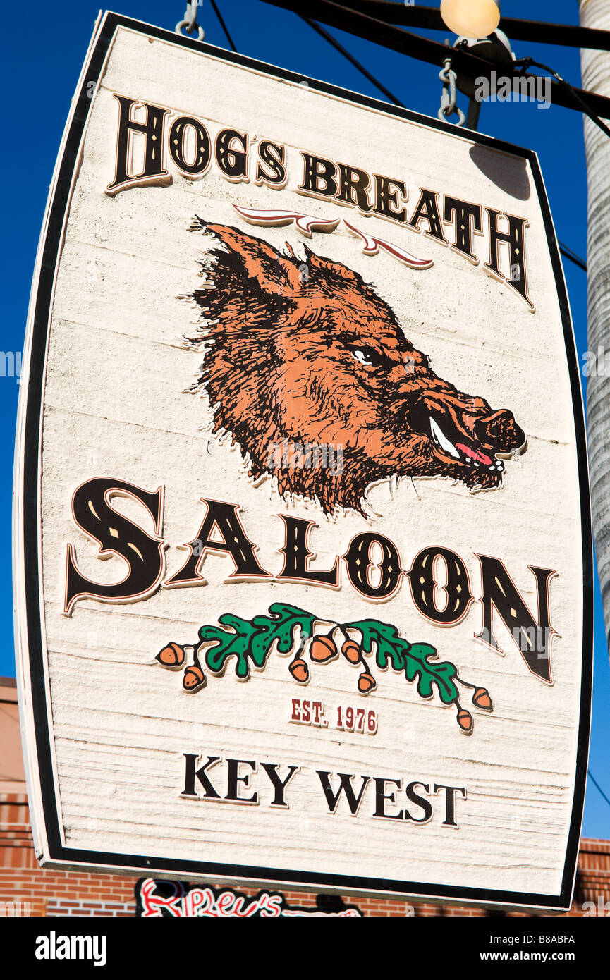 Sign for the Hogs Breath Saloon off Duval Street, Old Town, Key West, Florida Keys, USA - Stock Image