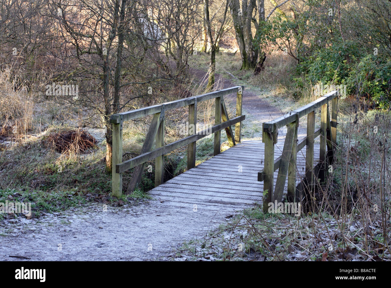 Semple Trail path over a frosty wooden footbridge in winter, Parkhill Woods, Clyde Muirshiel Regional Park, Lochwinnoch, Renfrewshire, Scotland, UK Stock Photo