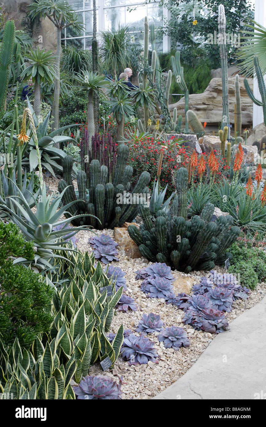 Temperate zone stock photos temperate zone stock images alamy dry temperate zone in glasshouse at rhs wisley garden uk stock image thecheapjerseys Image collections