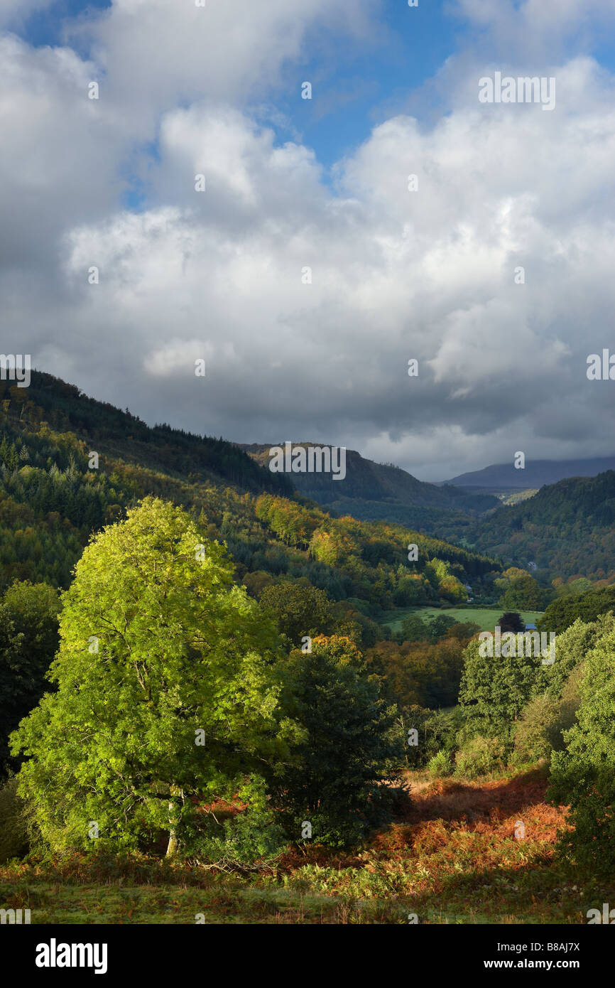 the Conway Valley, Snowdonia, North Wales, UK - Stock Image