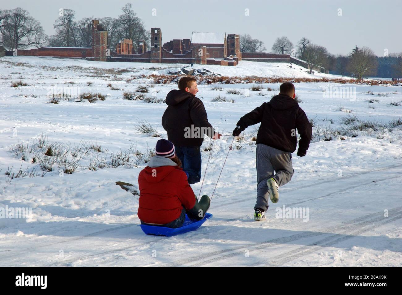 children pulling sledge, Bradgate Park, Leicestershire, England, UK - Stock Image
