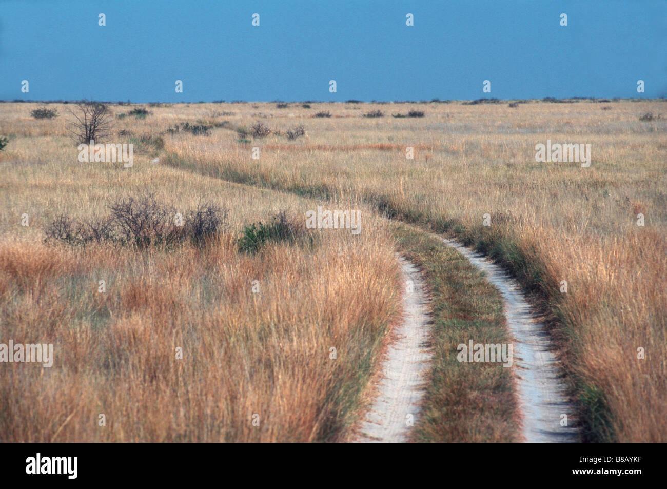 Remote sand track - Stock Image