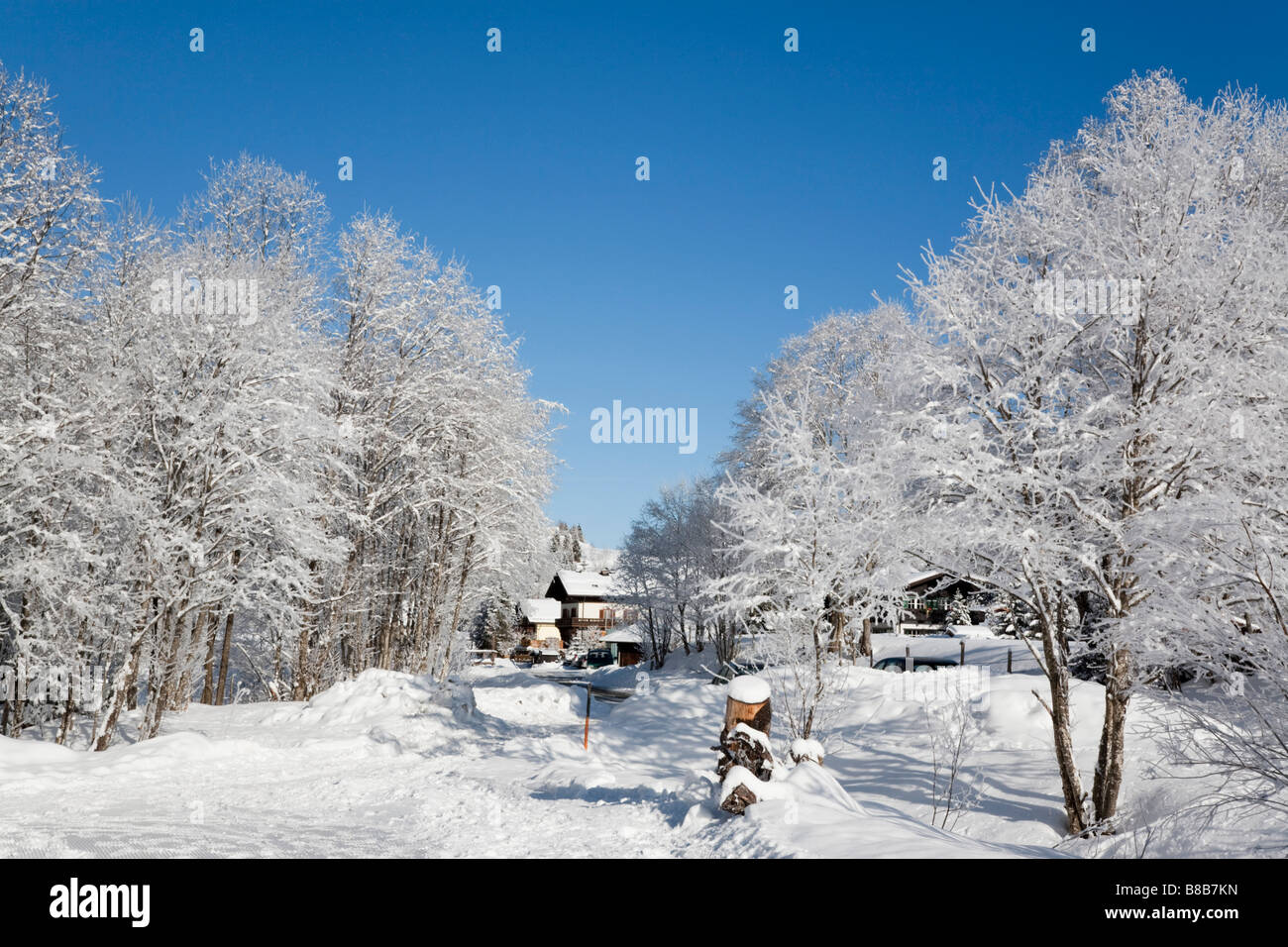 Bucheben Rauriser Sonnen Valley Austria Europe January Winter snow scene with trees covered in white hoarfrost after - Stock Image