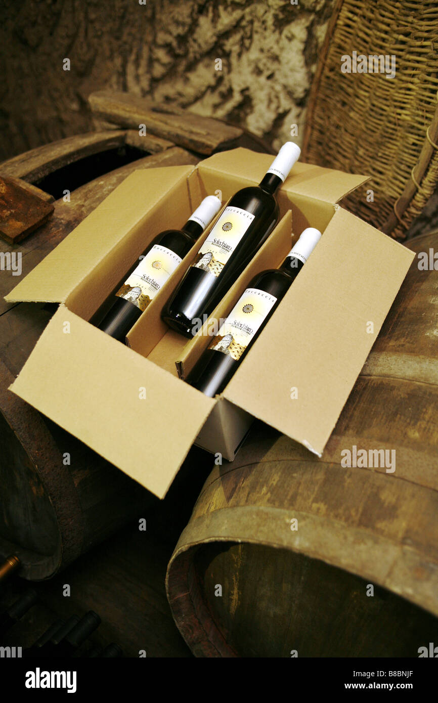Wine Bottles, Wine Cellar, Pitigliano, Grosseto, Italy - Stock Image
