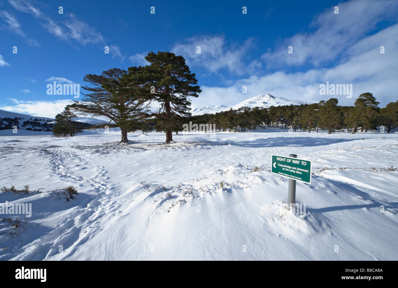 Scottish Rights of Way Society footpath sign in Glen Luibeg, Cairngorms, Aberdeenshire, Scotland, UK. - Stock Image