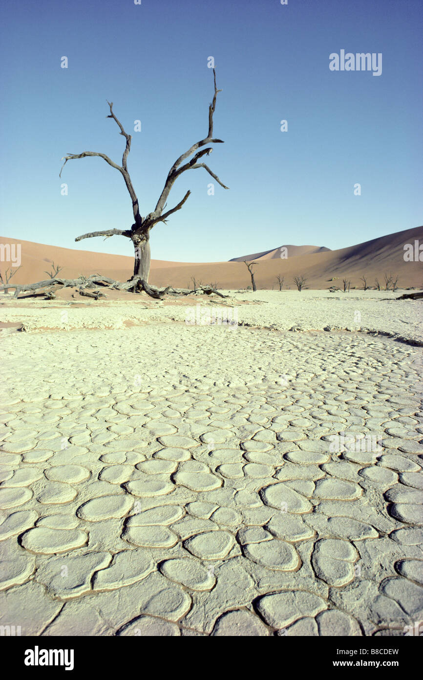 PAN IN DROUGHT - Stock Image