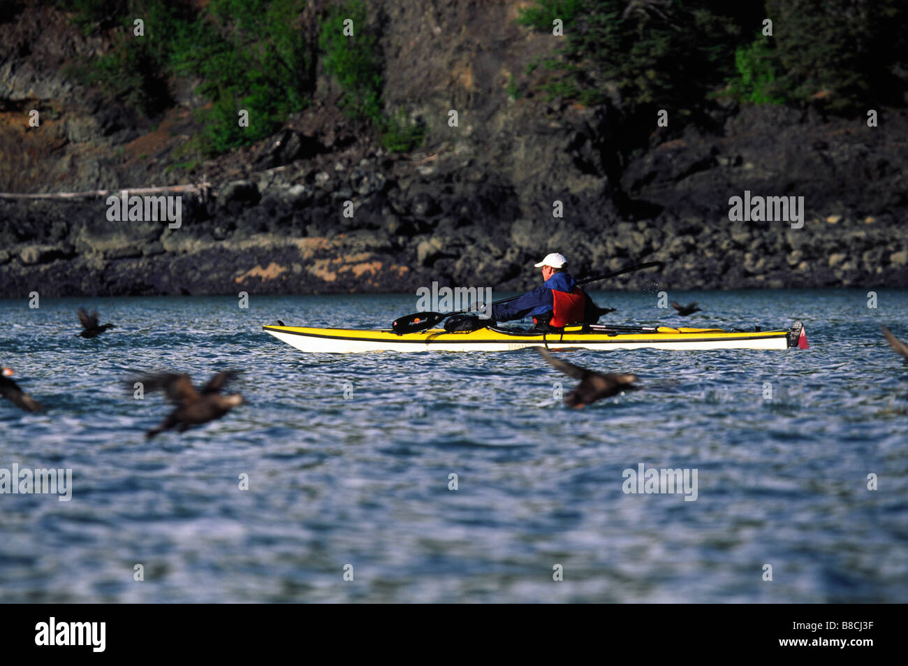 Kayaking  Seduction Point, Alaska - Stock Image