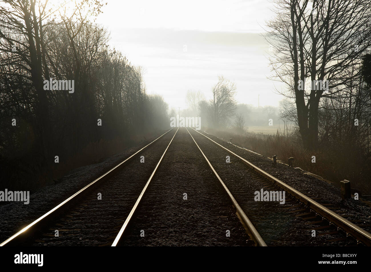 Converging railway lines, in dawn light, Womersley, Northern England - Stock Image