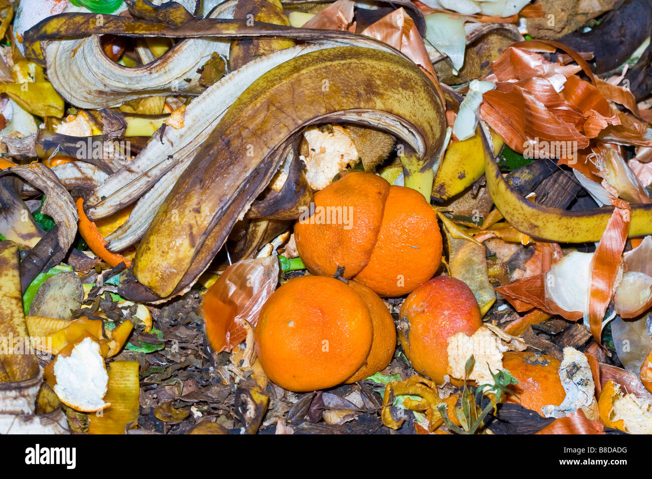 close up of different kind of vegetable garbage - Stock Image