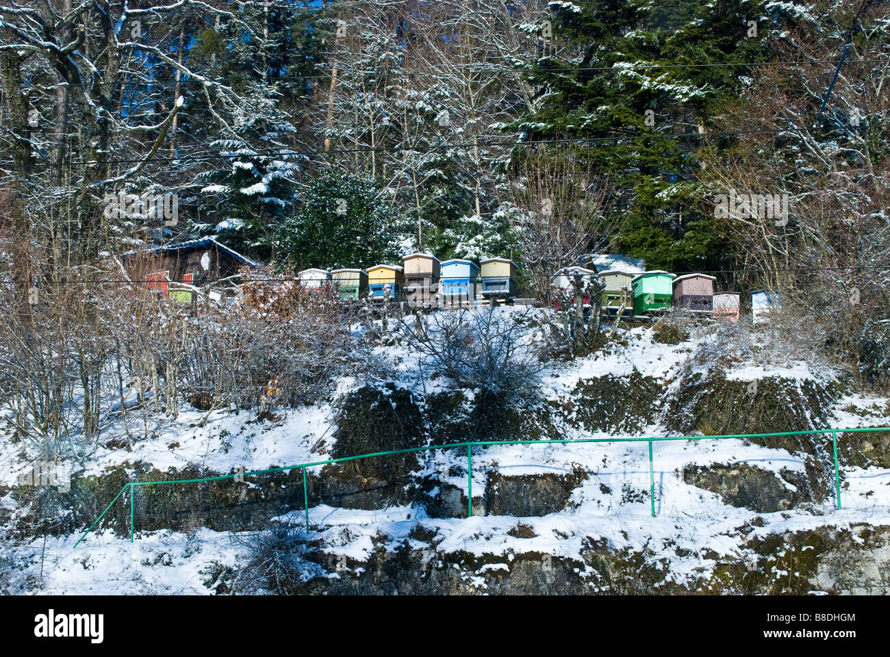 Brightly colored beehives covered with snow.  Switzerland. Charles Lupica - Stock Image