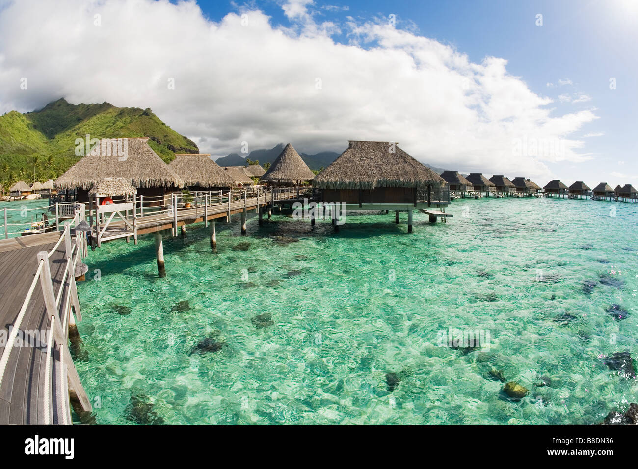 Holiday resort in moorea - Stock Image