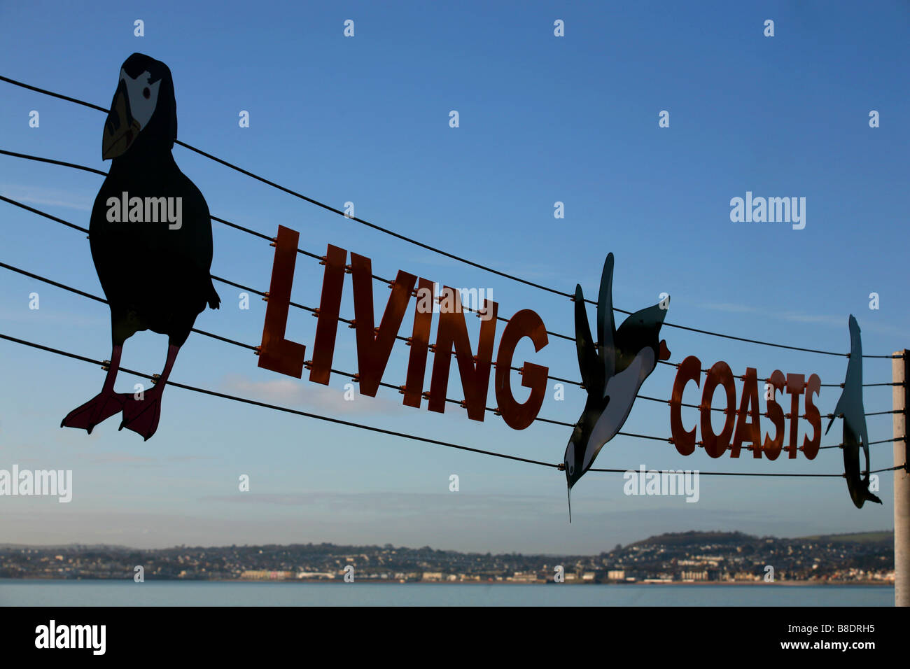 Living Coasts, Torquay Harbour, Devon, UK - Stock Image
