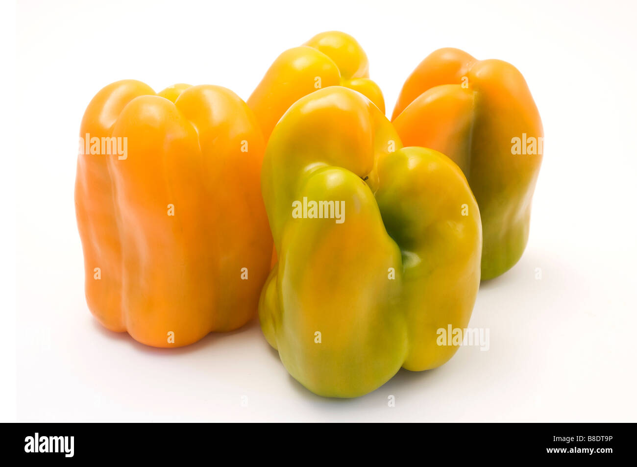 Yellow bell peppers Capsicum annuum on a white background - Stock Image