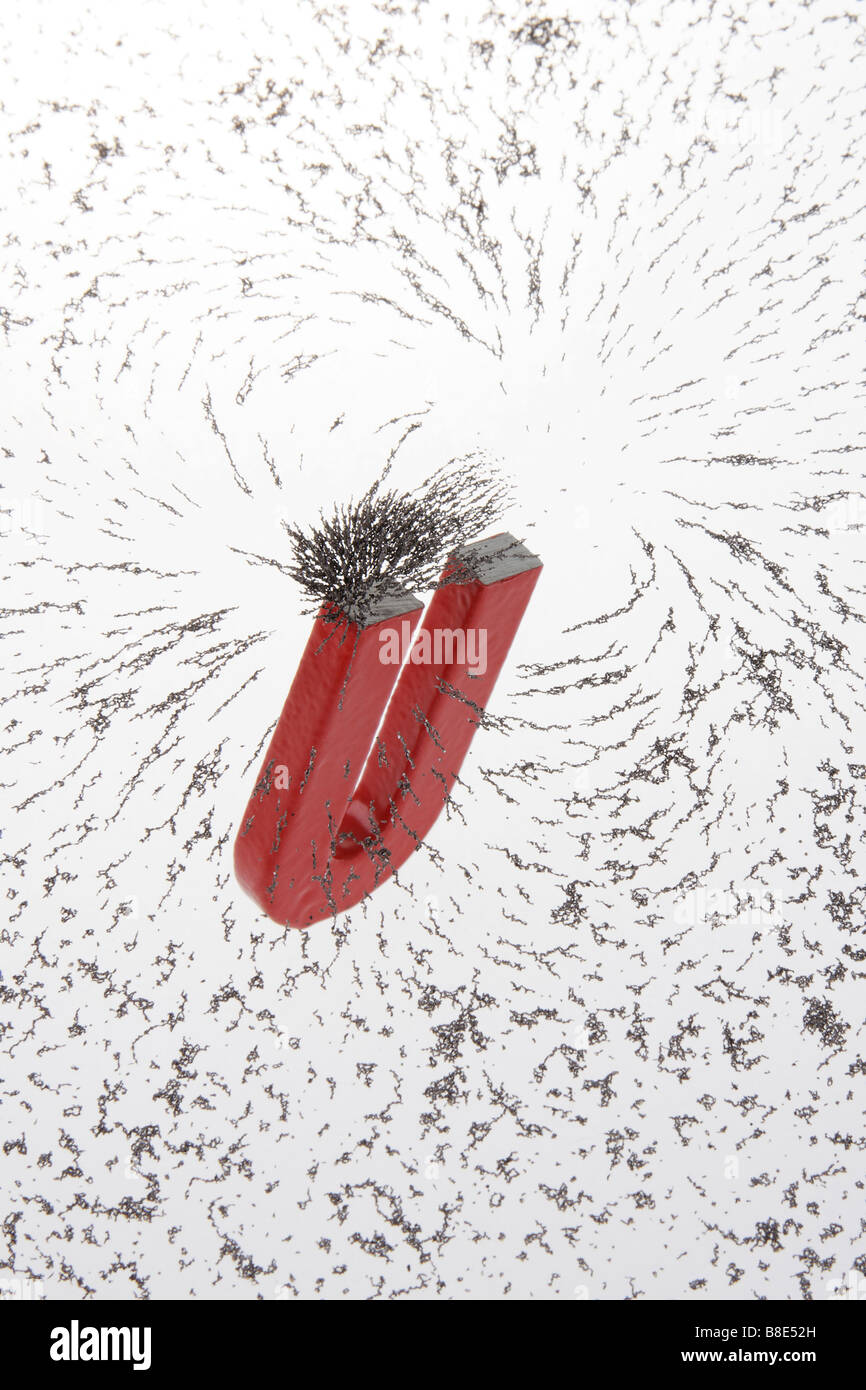 iron filing particles magnetized by horseshoe magnet - Stock Image
