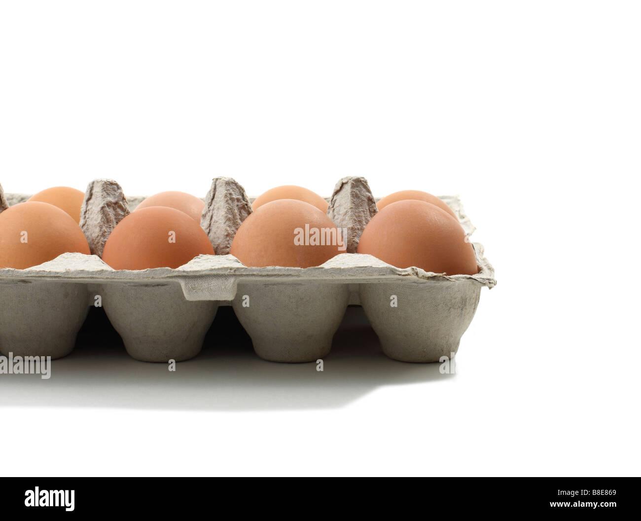 Open Carton of fresh Brown Eggs Stock Photo