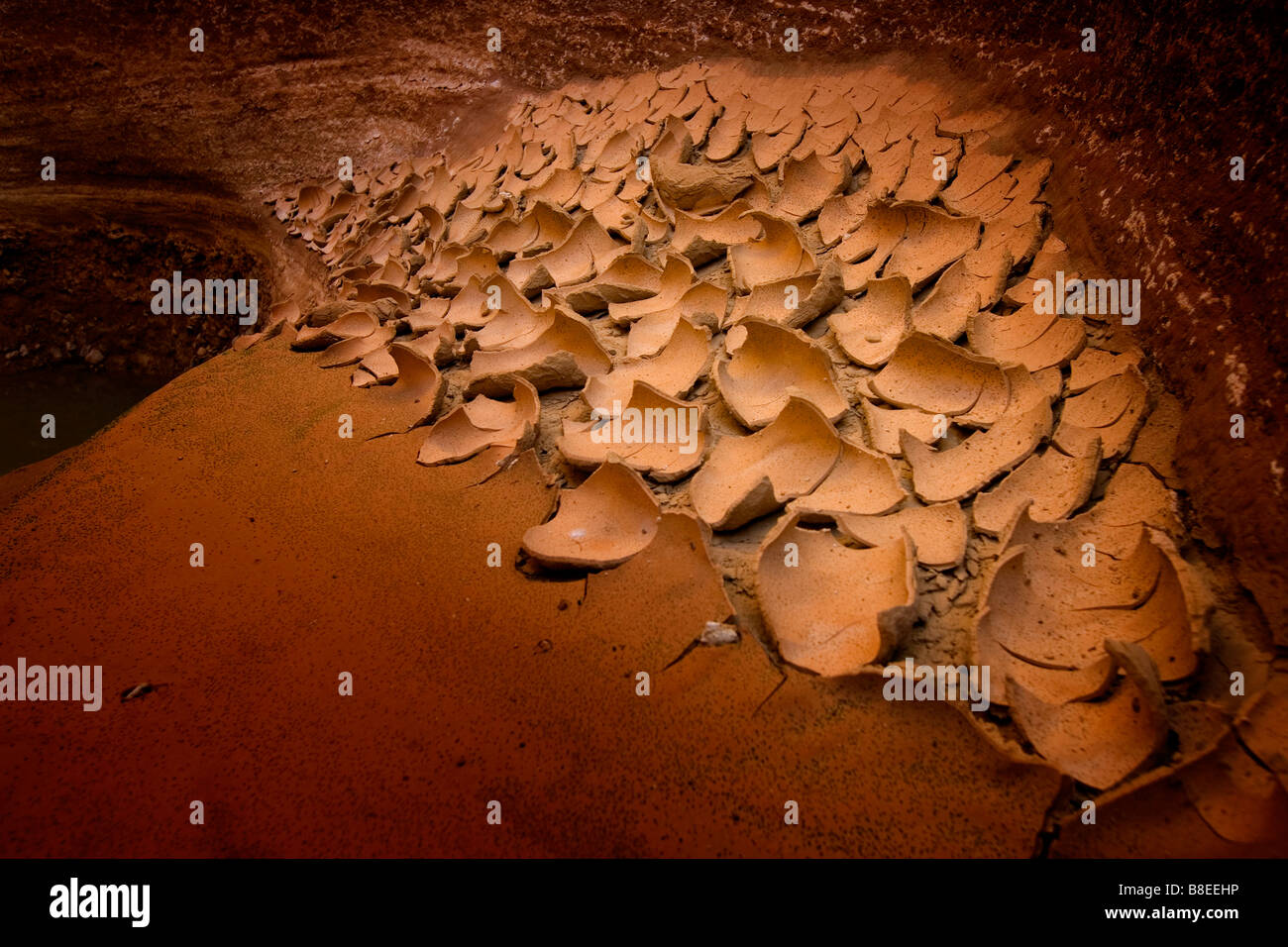 Flakes of dried mud in Egypt - Stock Image