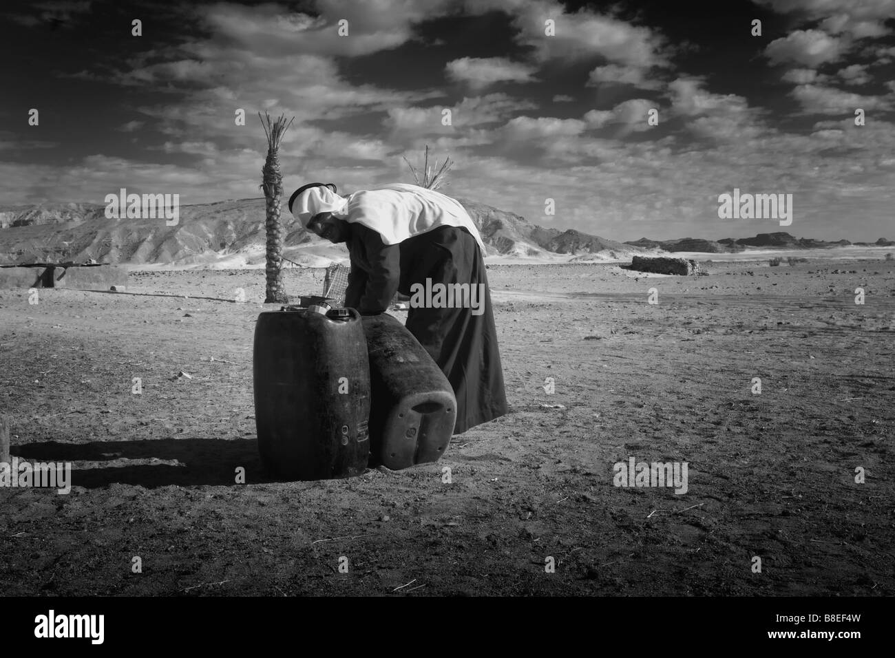 Black and white picture of a Bedouin male filling canisters with water in Egypt - Stock Image