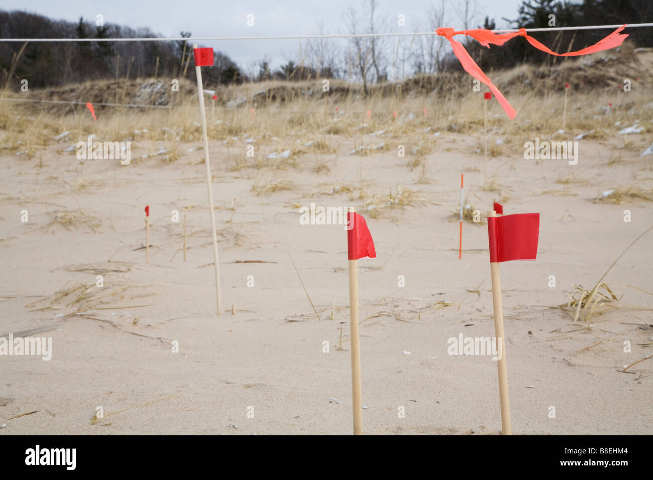 Researchers Study Movement of Sand Dunes - Stock Image
