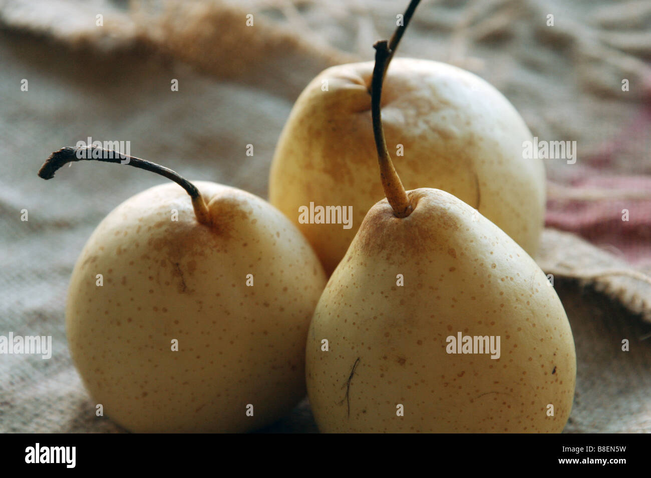 Pear fruit - Stock Image