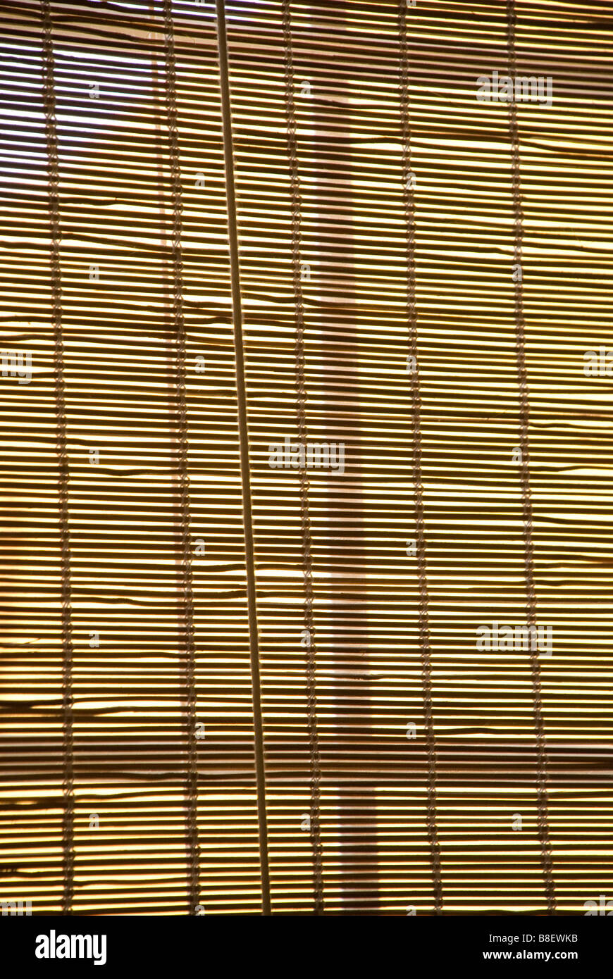 Bamboo blinds in front of a window - Stock Image