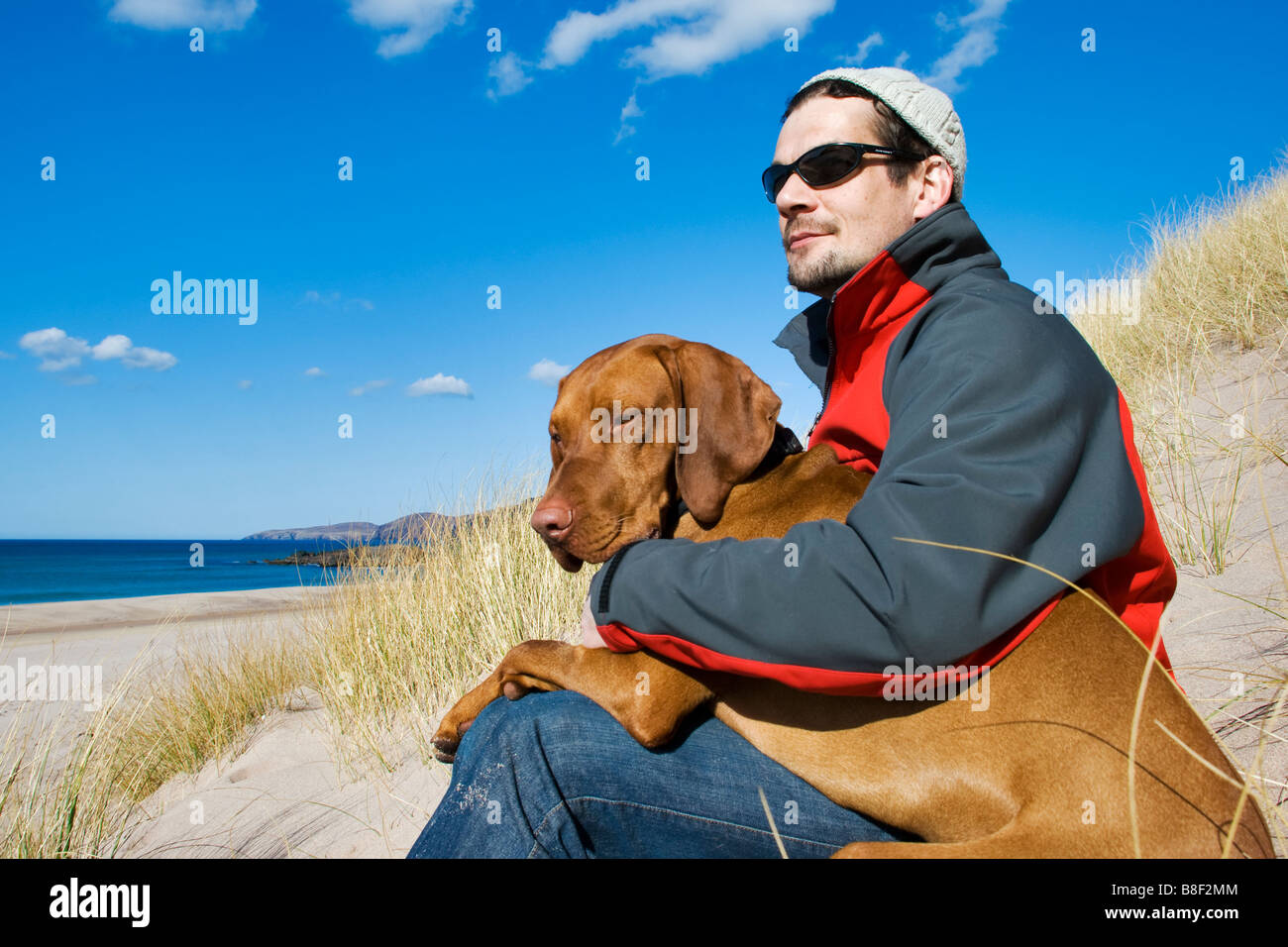 Man sat with hungarian vizsla dog on his lap on the isolated uk beach of Sandwood bay in Scotland - Stock Image
