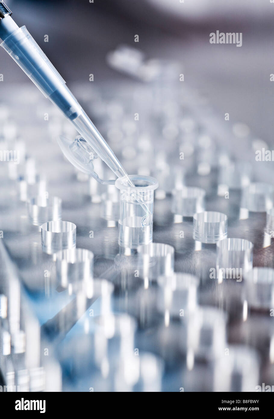 Pipette dropping medical samples into test tube on a test tube rack - Stock Image