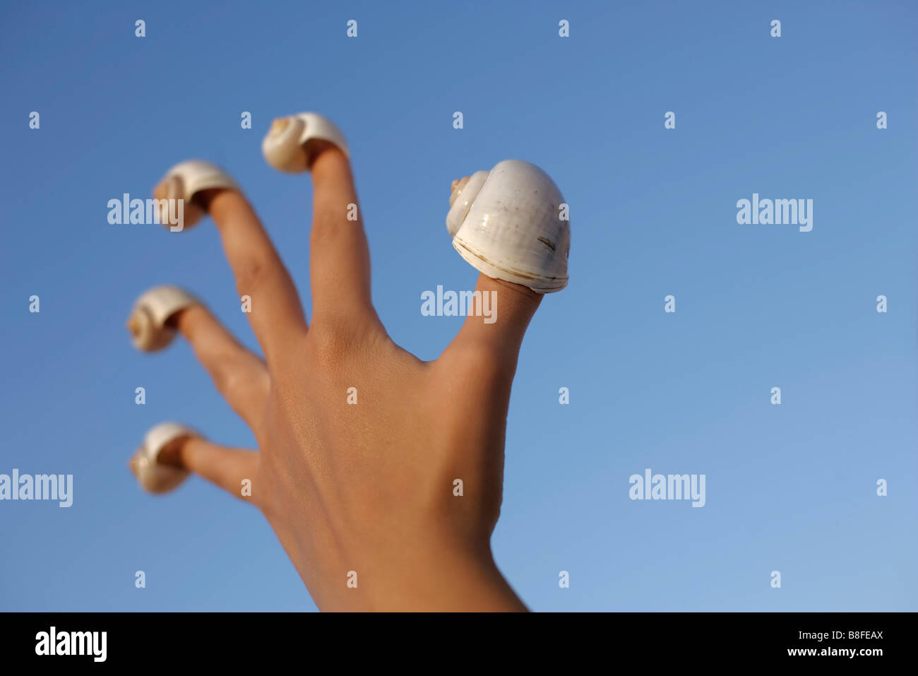 Snail-shells on every finger of a hand - Stock Image