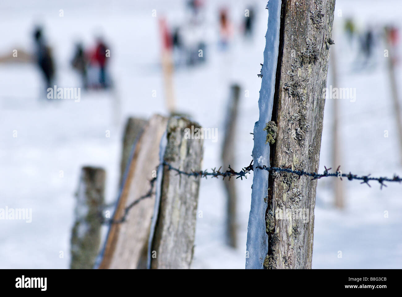 barbed wire fence line motivational row snow - Stock Image