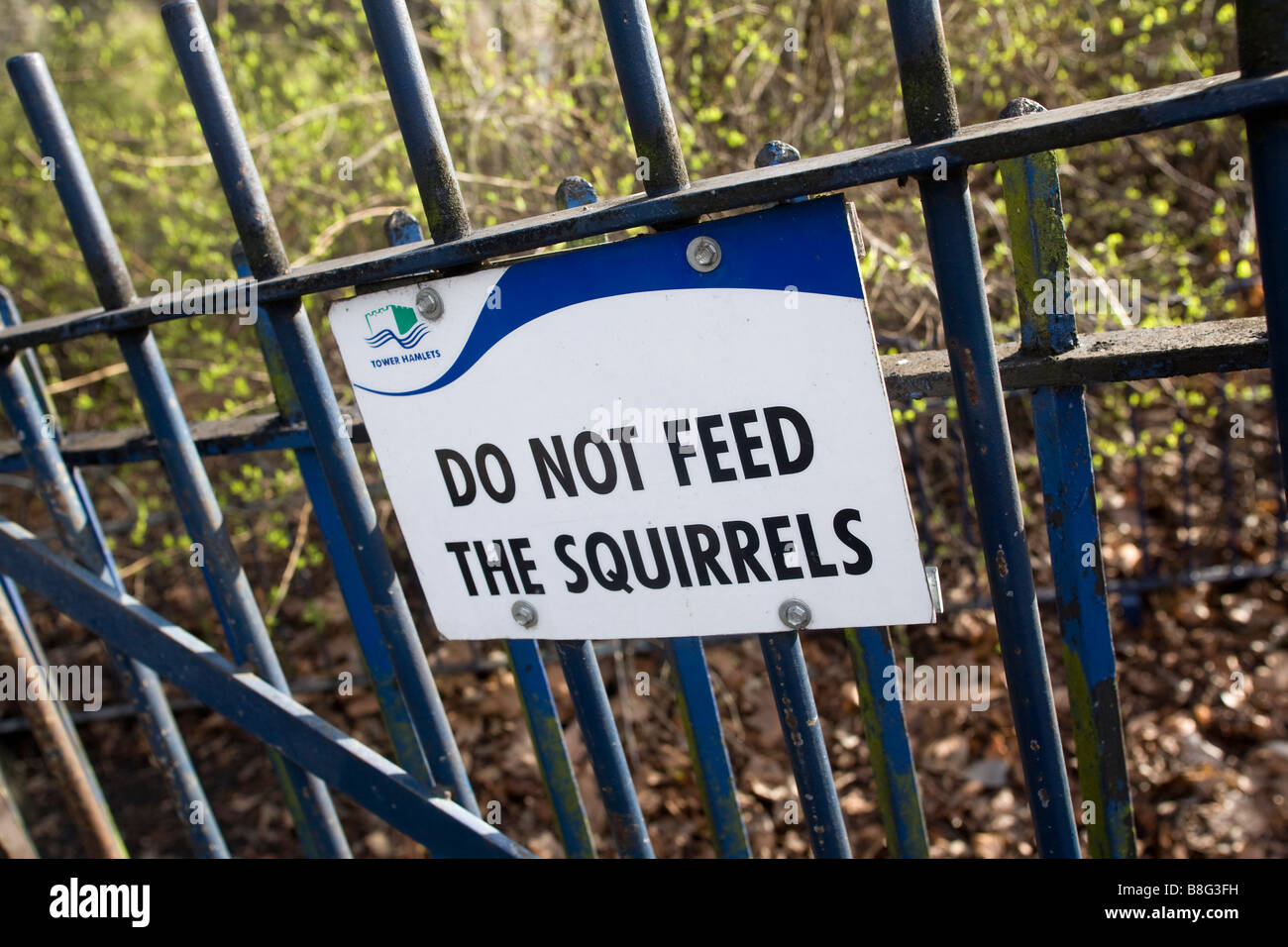 Do not feed the squirrels sign tied to fence - Stock Image