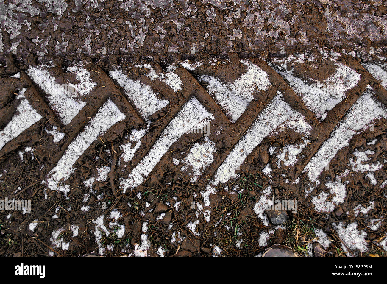 Shallow snow lies on tractor wheel prints in soil. - Stock Image