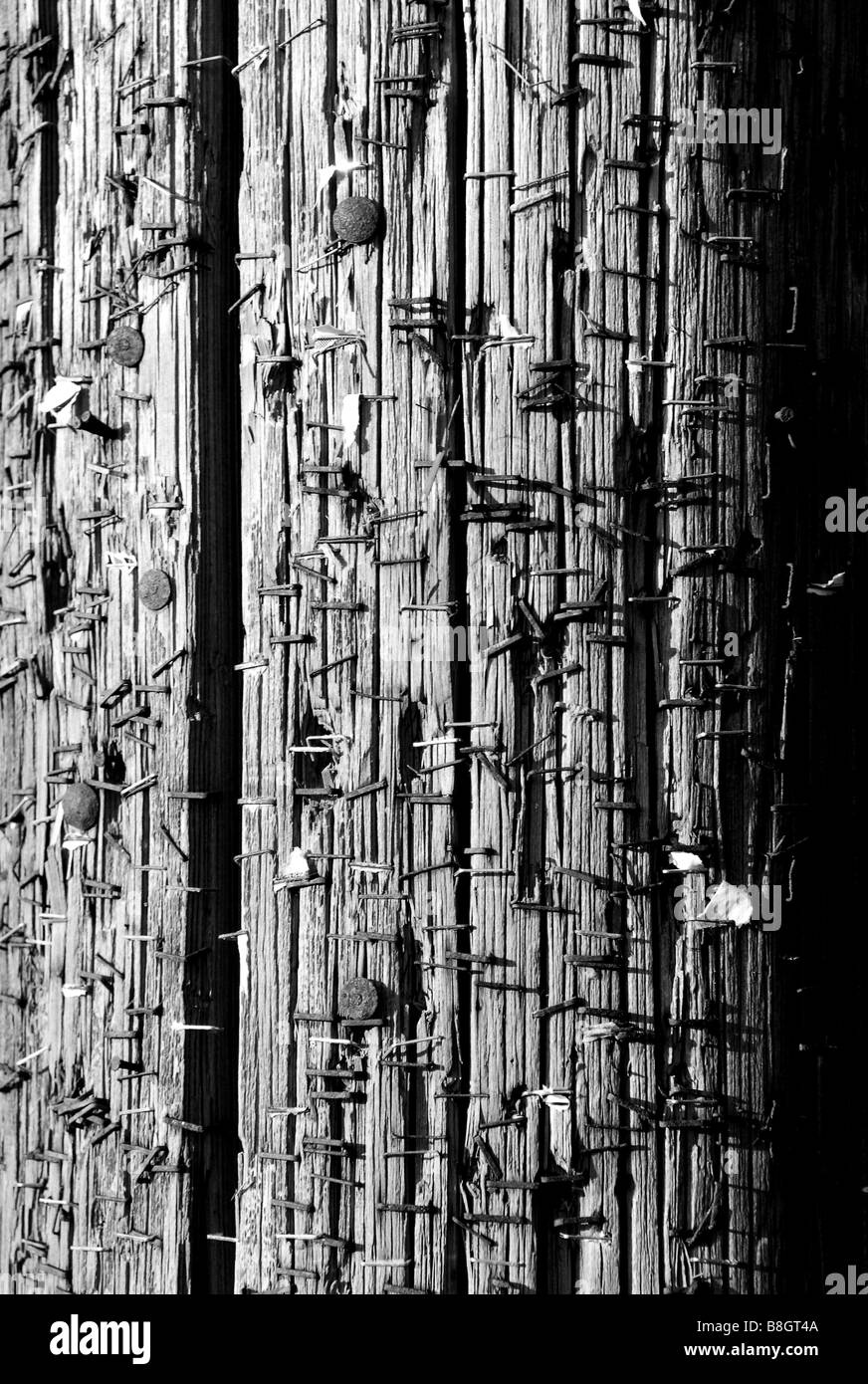 Remenants of centuries of advertisements on a telephone pole. - Stock Image