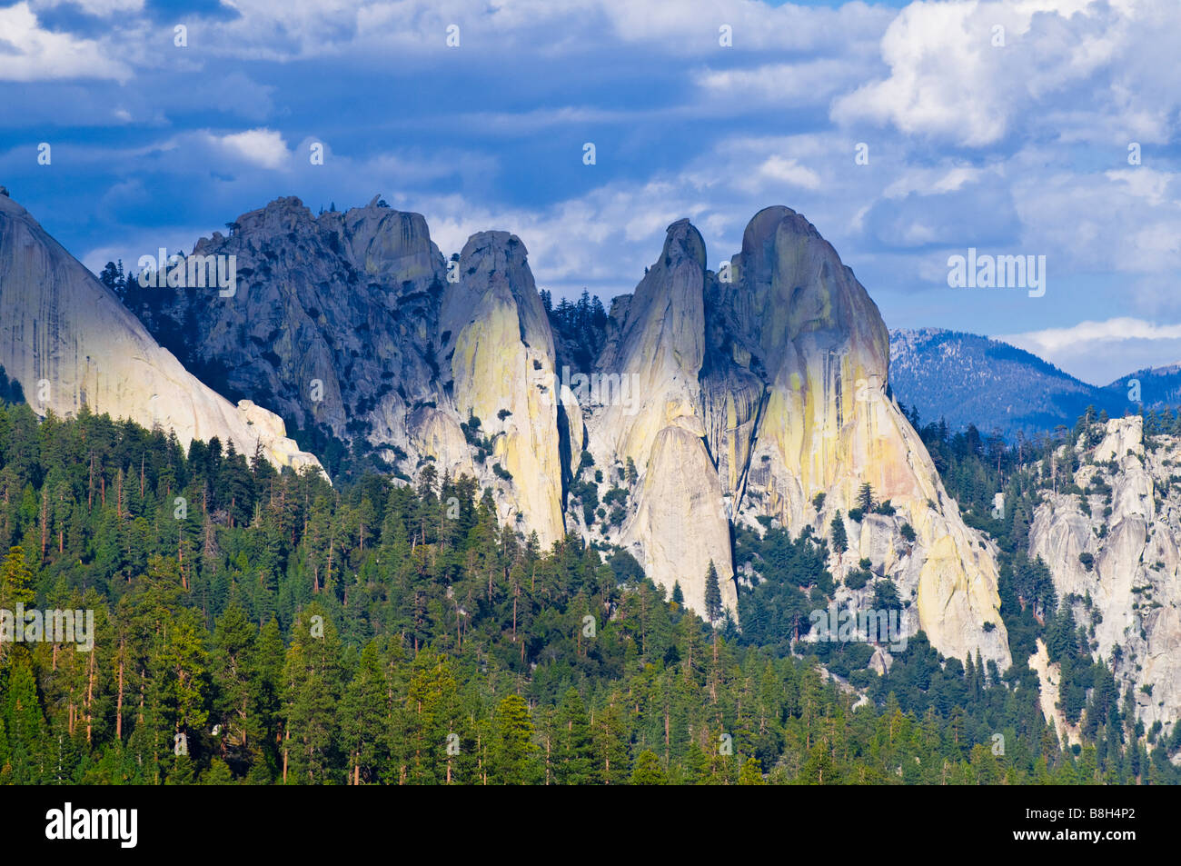 The Needles Sequoia National Monument Forest Sierra Nevada Mountains California - Stock Image